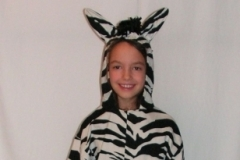 Zebra jelmez